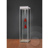 Display Cabinet with Illuminated Header 500mm