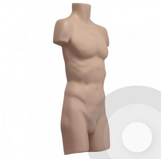 Male Body Form -Full (Box of 12)