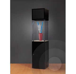 Museum Display Case With Header - Tall
