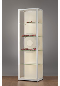 display cabinets with LED strip lights